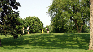 Read full article: In Madison, Municipal Golf Courses Are Bleeding Green