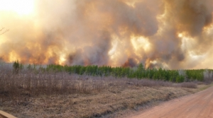 The Germann Road fire in northern Wisconsin in 2013 is the largest wildfire to hit the state in over 33 years. The fire consumed 7,499 acres and was started unintentionally from a logging crew harvesting timber on industrial timber lands.