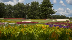 Read full article: Stevens Point Golf Course To Host USGA's 2023 Senior Open, Event With Estimated $20M Economic Impact