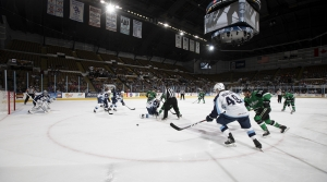 Read full article: Milwaukee Admirals Named AHL Champs After Season Cut Short By Coronavirus
