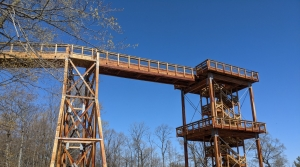 Read full article: Peninsula State Park Prepares For Summer With Upgrades, Opening Of Eagle Tower