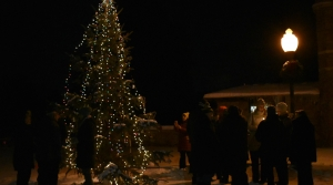 Remembrance tree at Pine Grove Cemetery in Wausau
