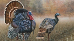Read full article: DNR Seeks Artist Submissions For Waterfowl, Turkey and Pheasant Stamps