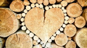 heart in wood pile