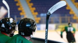 Two young ice hockey players looking at rink.