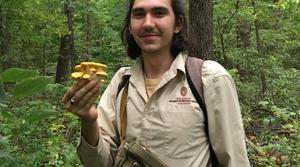Wild mushroom forest foray