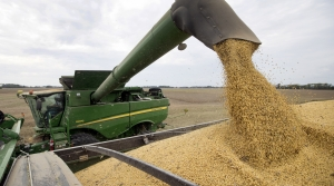 Read full article: With Harvest Underway, Wisconsin Farmers Continue To Face Uncertain Corn, Soybean Markets