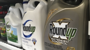 Roundup on store shelf