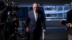 Senate Minority Leader Chuck Schumer (D - New York)