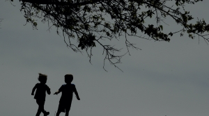 Kids running near a tree.