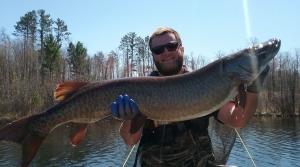 Read full article: DNR Project Monitoring Muskie Age, Growth Reaches 10 Years