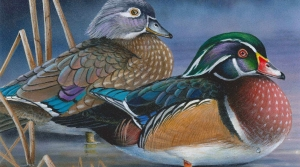 Robert Metropulos waterfowl art