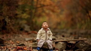 Small child sitting on rock in an autumn forest.