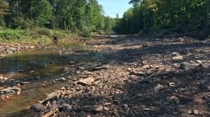 Oronto Creek