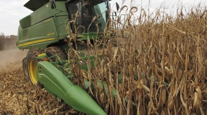 Read full article: Increased Cropland Rent Could Impact Already Struggling Wisconsin Farmers