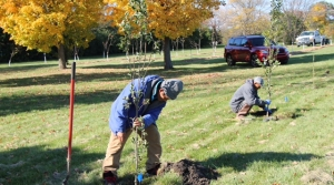 Read full article: Milwaukee County To Be Home To Largest Urban Organic Fruit Orchard In US