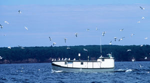 Read full article: State Commercial Fishers Buck DNR's Proposed Limits On Cisco Harvests In Lake Superior