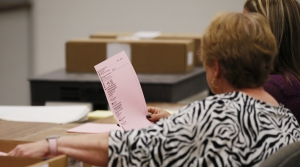 Read full article: Green Party Members Taking Crash Course In Observing Wisconsin Recount