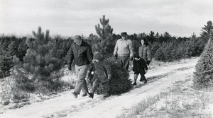 Read full article: The Christmas Tree In Wisconsin History
