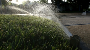 Read full article: Altoona Urges Residents To Restrict Water Usage As City Nears Pumping Capacity