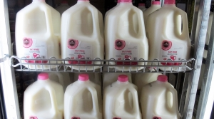 Read full article: Proposed Law Could Prevent Non-Dairy Producers From Calling Products 'Milk'