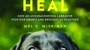 Read full article: Sit Stay Heal by Mel Miskimen
