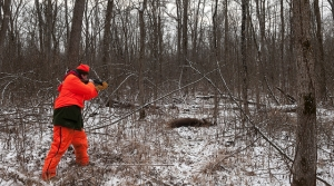 Read full article: Deer Harvest Down 15 Percent From 2013 Totals