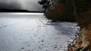 Read full article: Ice On Some Northern Lakes And Rivers Still Unsafe