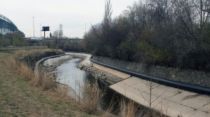 Read full article: Milwaukee River Project Aims To Draw More Great Lakes Fish