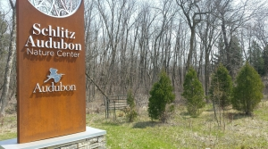 Read full article: Wisconsin Nature Centers Work To Cope With Emerald Ash Borer