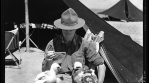 Read full article: Vintage Wisconsin: Birthday Wishes To Wisconsin's Own Indiana Jones