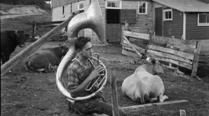 Read full article: Wisconsin's Love Affair With The Tuba