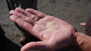 Read full article: Judge Upholds County's Decision To Reject Frac Sand Mine Application