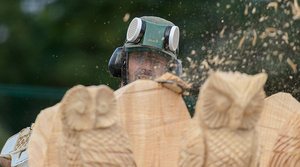 Read full article: Eau Claire To Host U.S. Open Chainsaw Sculpture Championship
