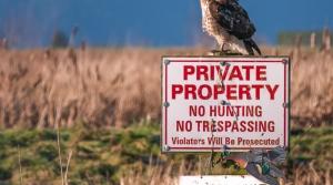 Read full article: Walker: Regulations Shouldn't Trump Property Rights
