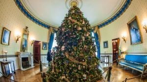 Read full article: Wisconsin Grower Selected To Provide White House Christmas Tree