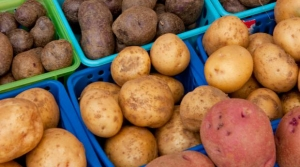 Read full article: Potatoes, Once Maligned, Get A Nod From State Health Officials