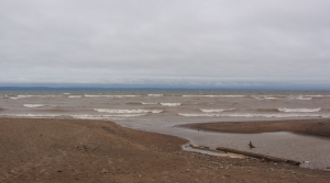 Read full article: EPA Cuts Funding For Great Lakes Public Outreach Programs