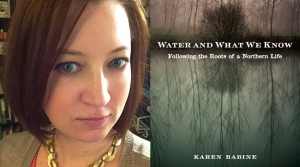 Read full article: Minnesota Writer Searches For Meaning In 'A Northern Life'