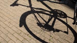 Biking in summer.
