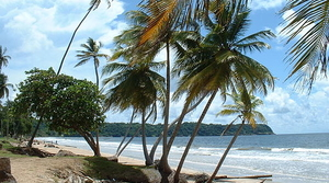 Beach in Trinidad & Tobago, image by Wikimedia Commons user Kalamazadkhan