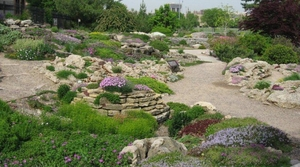 The Rock Garden at Allen Centennial Gardens, photo by Ed Glover