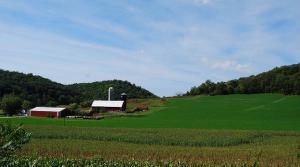 farm, LongitudeLatitude (CC-BY)