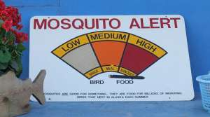 mosquito alert, image by Flickr user Travis S.