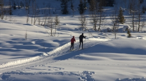 Read full article: With Recent Snowfall, Northern Wisconsin's Ski Hills Report Uptick In Business