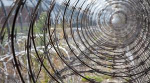 A coil of barbed wire along the walls of a prison