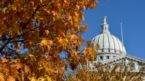 Read full article: Fight For Wisconsin Senate Focuses On 3 Key Districts