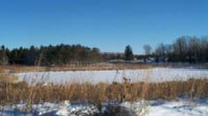 Read full article: Wisconsin Resources Protection Council sues over pollution of Flambeau River