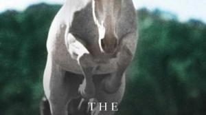 Bookcover of The Eighty-Dollar Champion by Elizabeth Letts