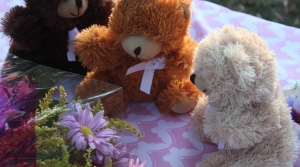 Read full article: River Falls residents turn out to honor slain girls